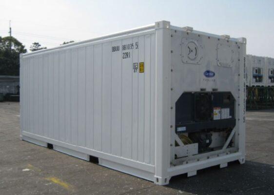 Một số hình ảnh thực tế của container 20 feet lạnh - ảnh 2