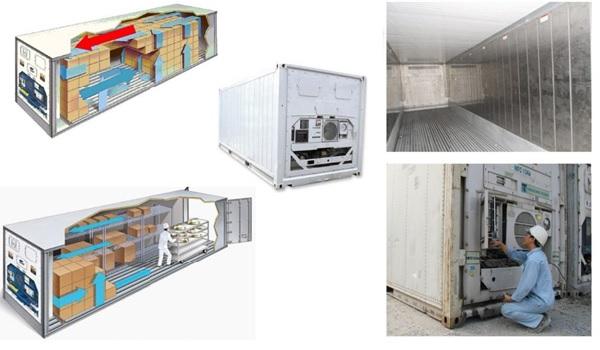 Một số hình ảnh thực tế của container 20 feet lạnh - ảnh 3